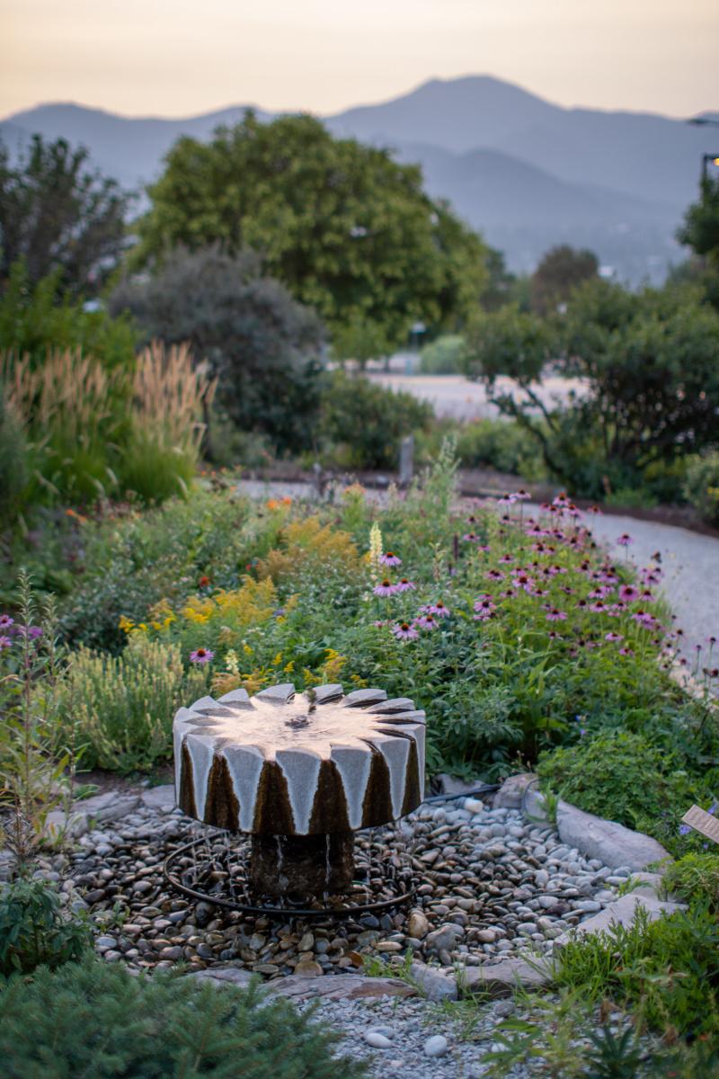 Smoky evening garden