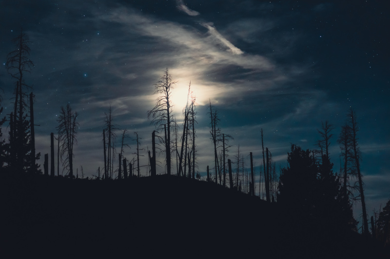 Wispy clouds over the moon and burned forest