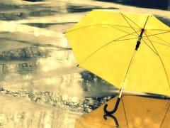 Вологжан ожидают дождливые выходные