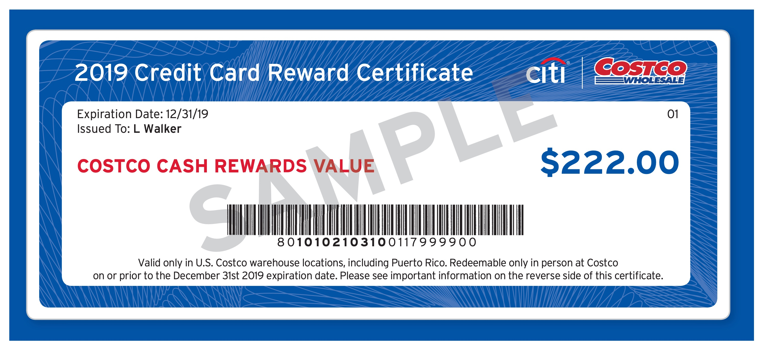 8 Review: Costco Anywhere & Anywhere Business Visa Cards by Citi