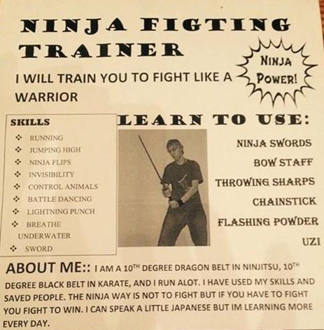 Funny Ninja Poster