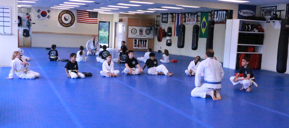 national martial arts Kids Martial Arts poughkeepsie hyde park