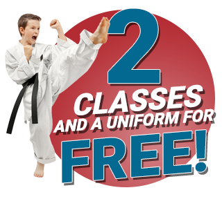 Kids martial arts naperville