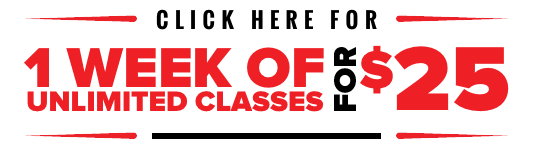 Kids Fitness and Boxing Classes and Lessons - West Loop - Illinois