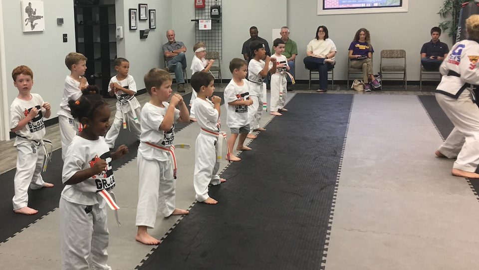 Kids Martial Arts Edwardsville