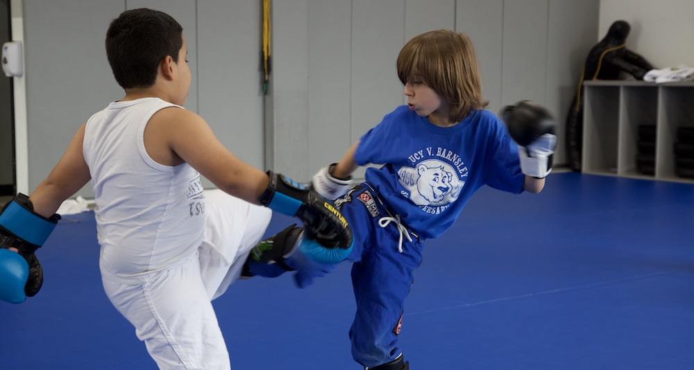 pure performance Kids Martial Arts rockville