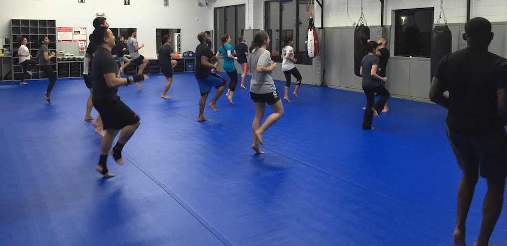 pure performance martial arts muay thai kickboxing rockville