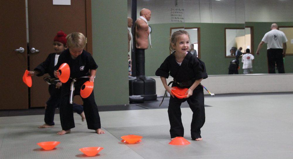 buffalo grove martial arts Kids Martial Arts