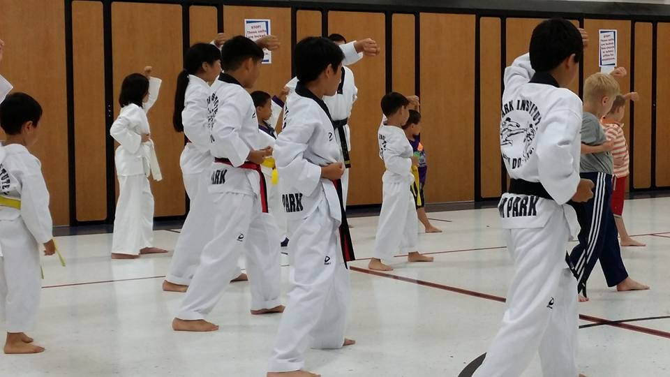 park institute of taekwondo kids karate rochester