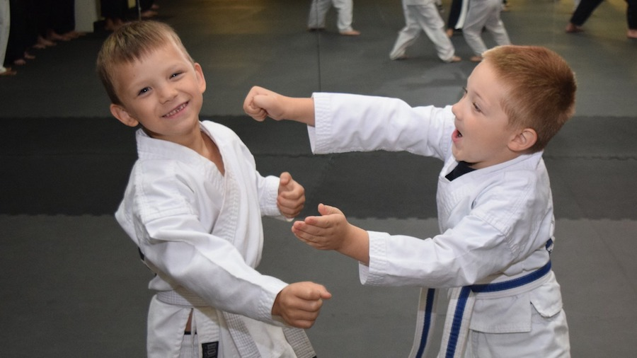 martial arts america Kids Martial Arts greendale