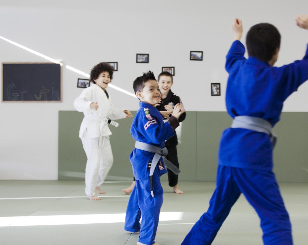 Brazilian Jiu Jitsu Waukee
