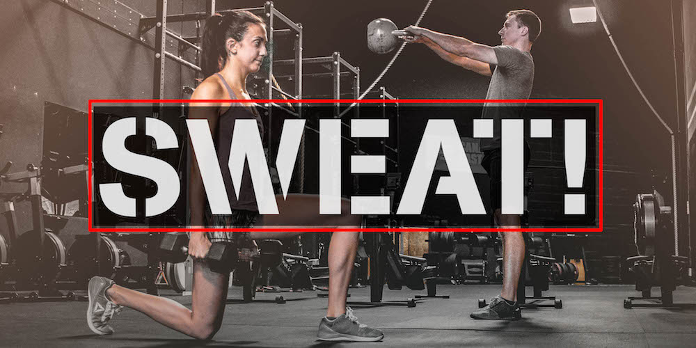Which sweat program is best for weight loss