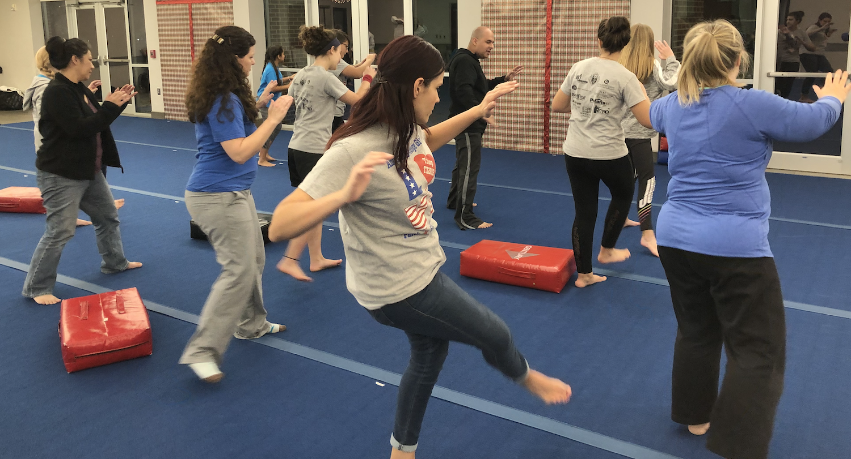 Keller Self-Defense - American Defensive Arts Academy - Keller, Texas