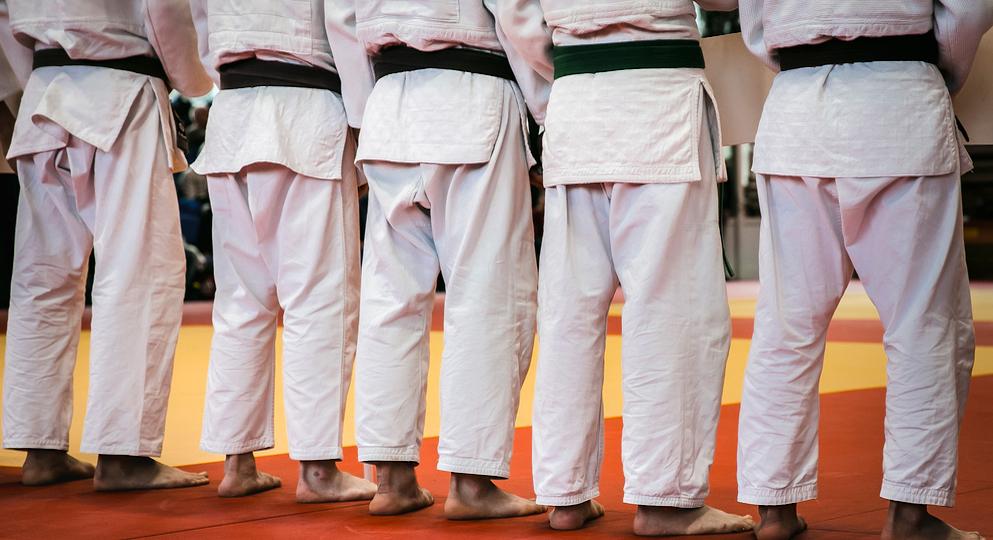 Jow Ga Kung Fu