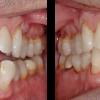 General Dentistry near Matthews
