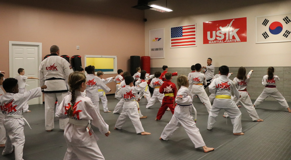 Kids Martial Arts near Pineville