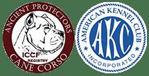 Available Puppies in Bodyguard Cane Corso - Bodyguard Cane Corso