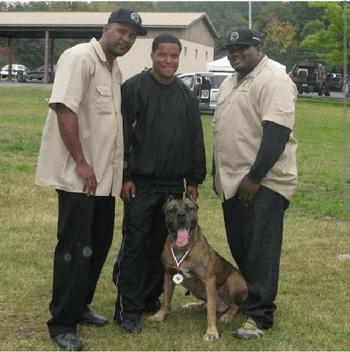 Ch Cabo Wabo in - Bodyguard Cane Corso