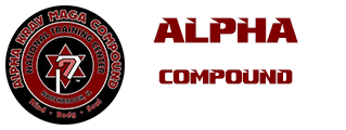 Alpha Krav Maga Compound Will Tamondong