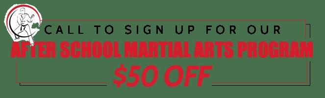 American Karate Studios After School Program
