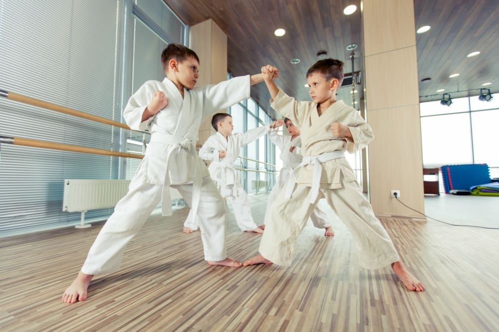 Kids Martial Arts Orangeburg