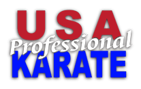 Kids Karate in Pittsburgh - USA Professional Karate Studio