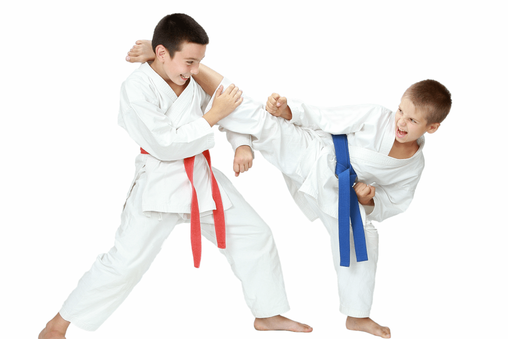 Pure Mixed Martial Arts - Jiu Jitsu Classes - Rockaway, New