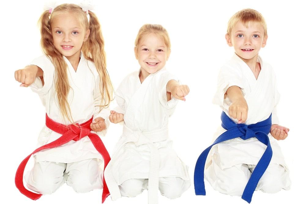 Kids Martial Arts Fayetteville