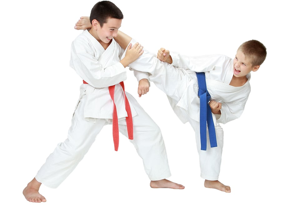 Levittown Kids Karate