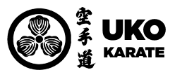 Kids Martial Arts in Port Orchard - UKO Karate