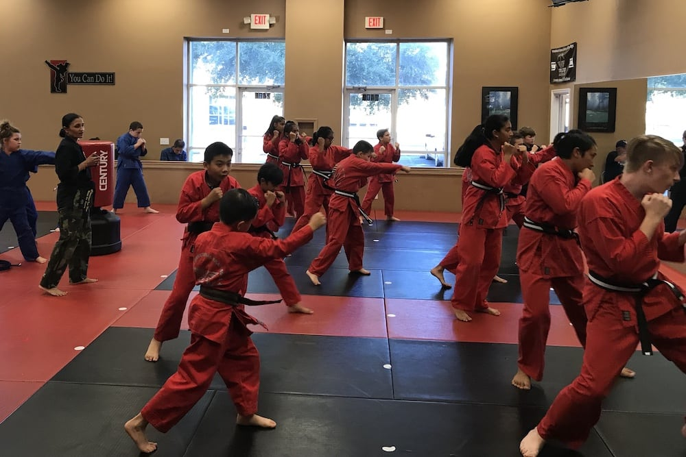 Kids Martial Arts near Odessa