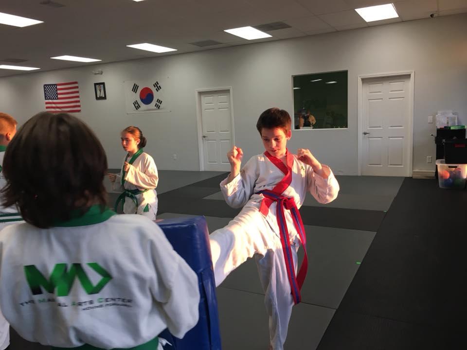 kids martial arts ocala