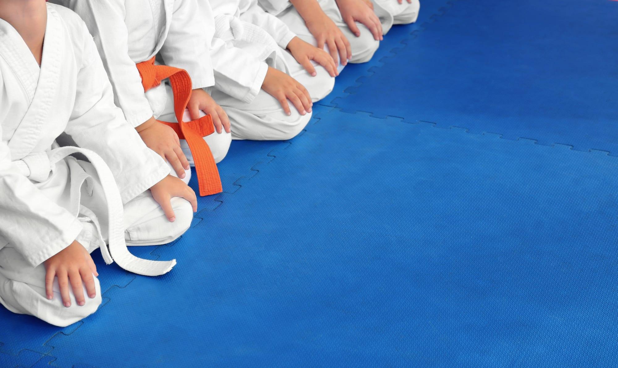 Arab's Home for Taekwondo
