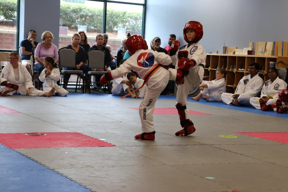Kids Taekwondo near Winston Salem