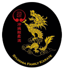 Kids Martial Arts in Toledo - Sylvania Family Karate
