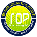 Kids Martial Arts Spartanburg