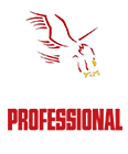 American Professional Martial Arts Andy S.