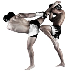 MMA Mixed Martial Arts near Bayswater