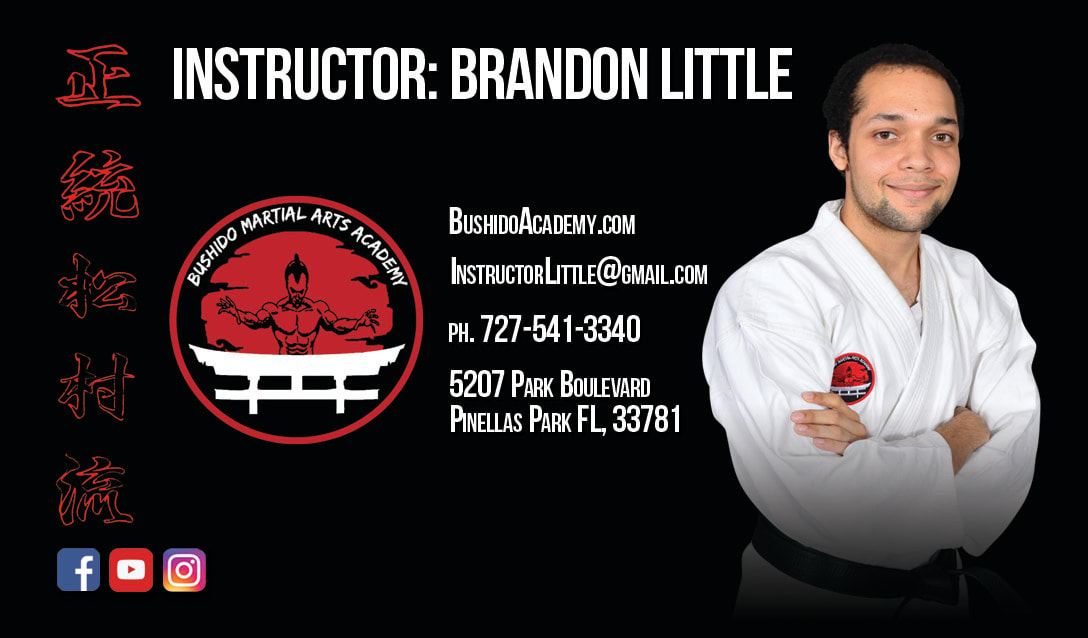 Kids Martial Arts near Pinellas Park