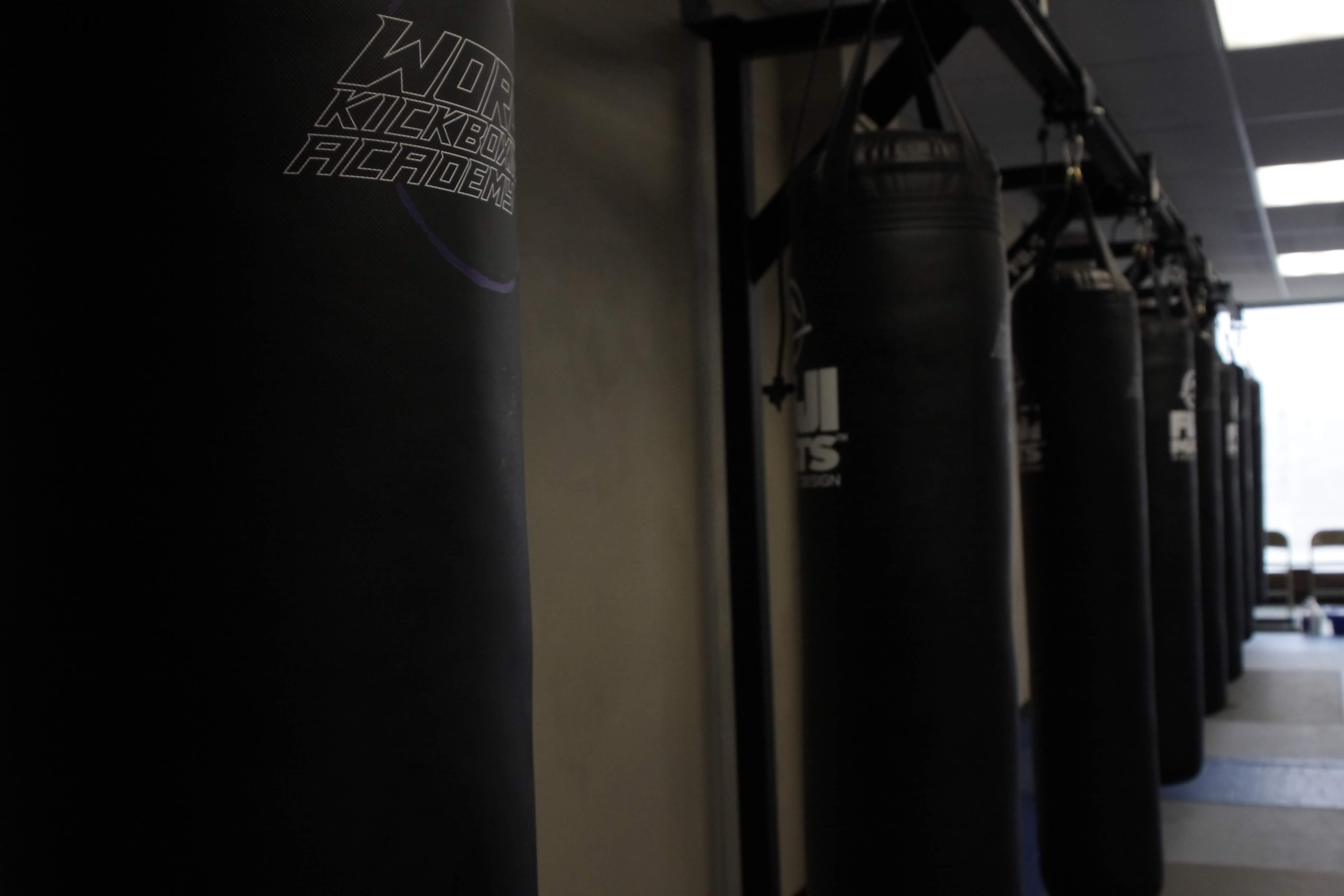 WORLD KICKBOXING ACADEMY IN CUYAHOGA FALLS