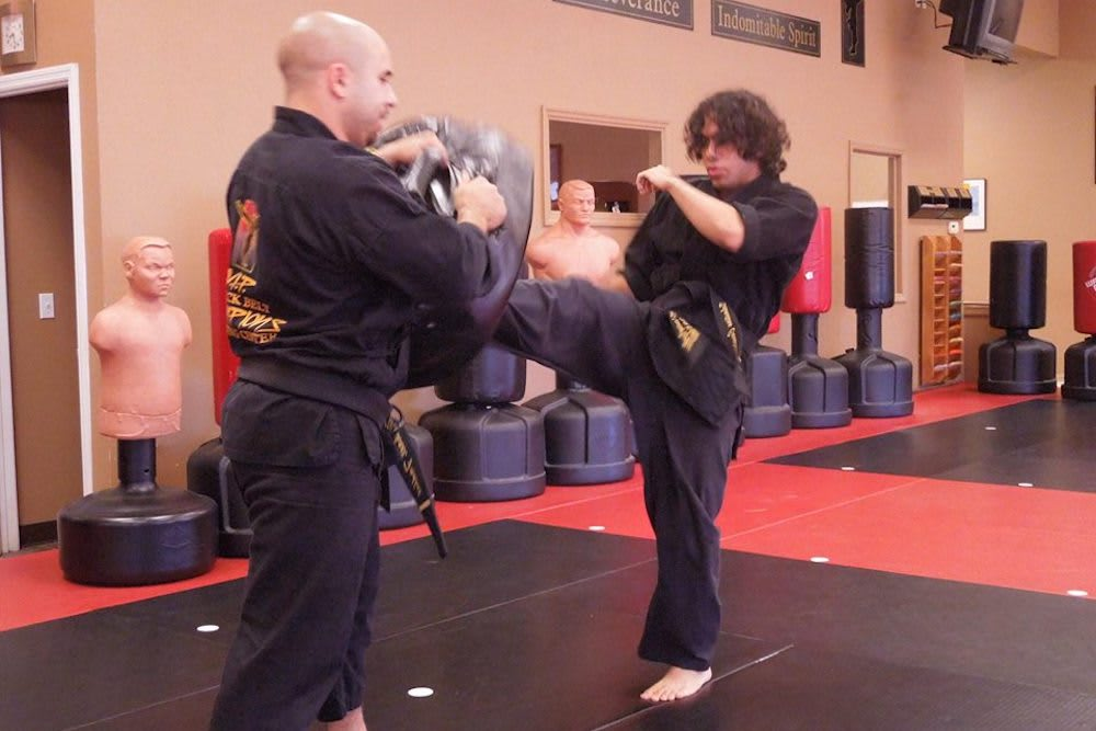 Adult Martial Arts near Odessa