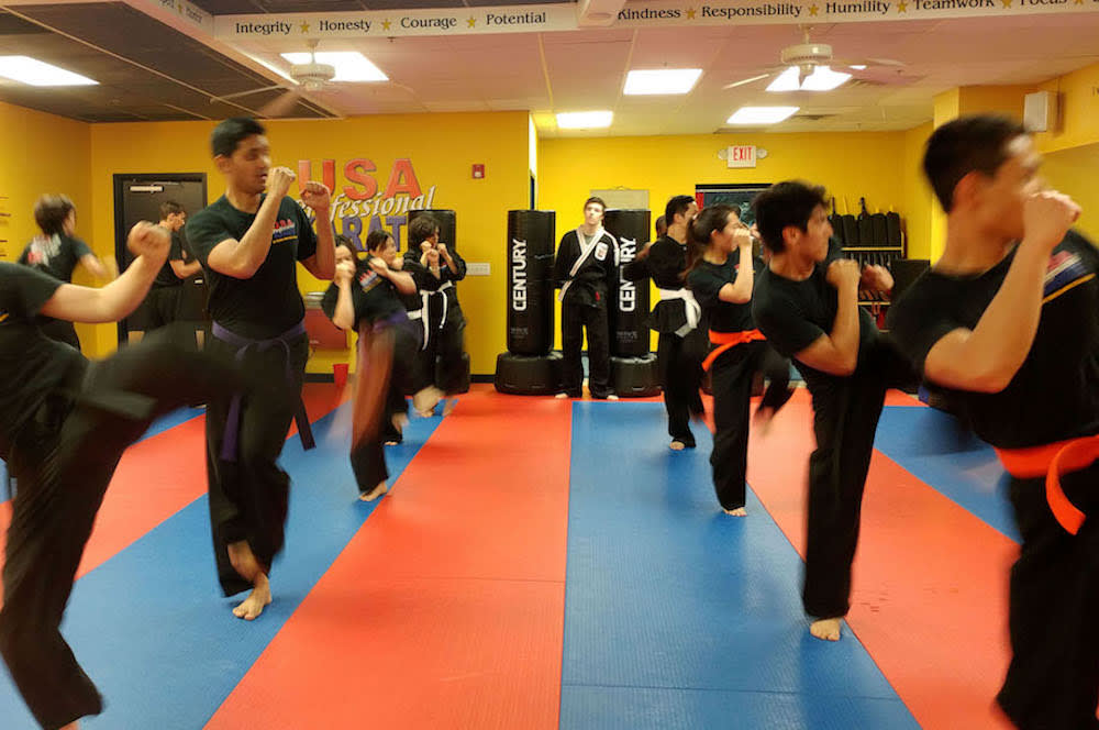 Usa Professional Karate Studio Krav Maga Classes Pittsburgh