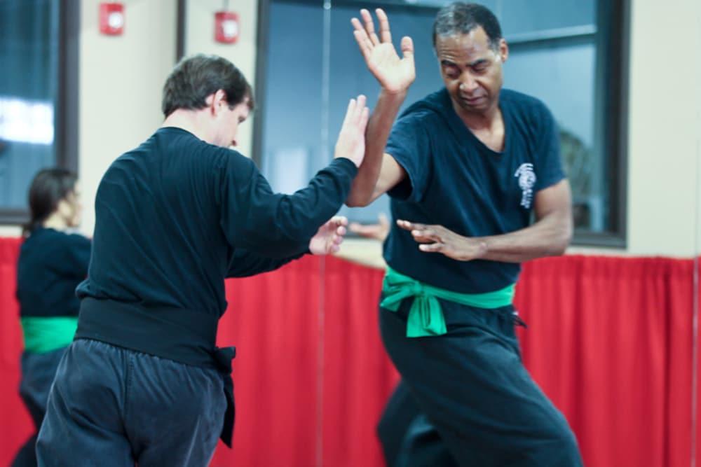 Kids Martial Arts Dumont