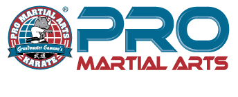 PRO Martial Arts Bryn Mawr Louis M., Village on the Creeks, AR