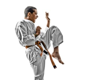 Metro United Karate Kids Martial Arts Livonia