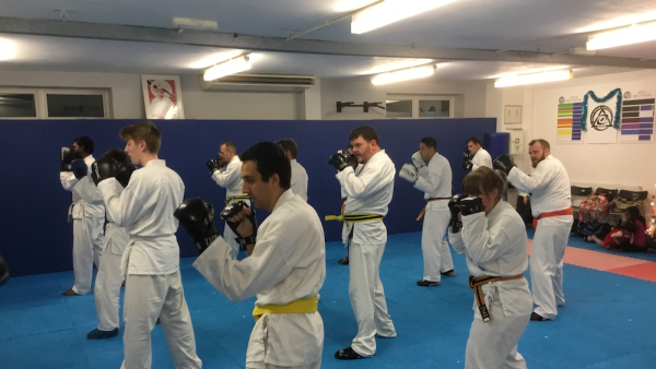 Teen And Adult Martial Arts  in Redhill - Ellis Academy