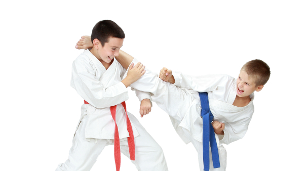 kids martial arts in winston salem
