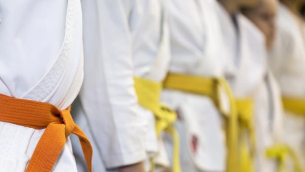 Kids Martial Arts  in Agawam - Royce Gracie Agawam