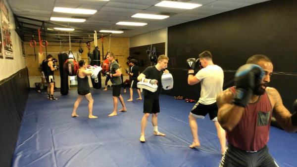 Muay Thai in Asheville - Rogue Combat Club
