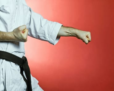 Adult Martial Arts  in Knoxville - P3 Martial Arts